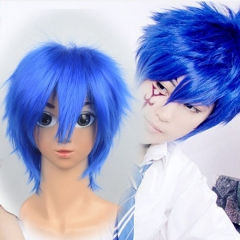 Fairy Tail Jellal Wig