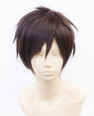 Attack on Titan Eren Wig