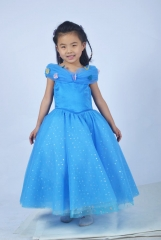 Cinderella Ella Dresses Children Version